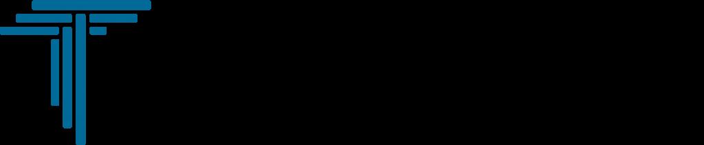 Logo_TownSquare-WM-Consult-Horz